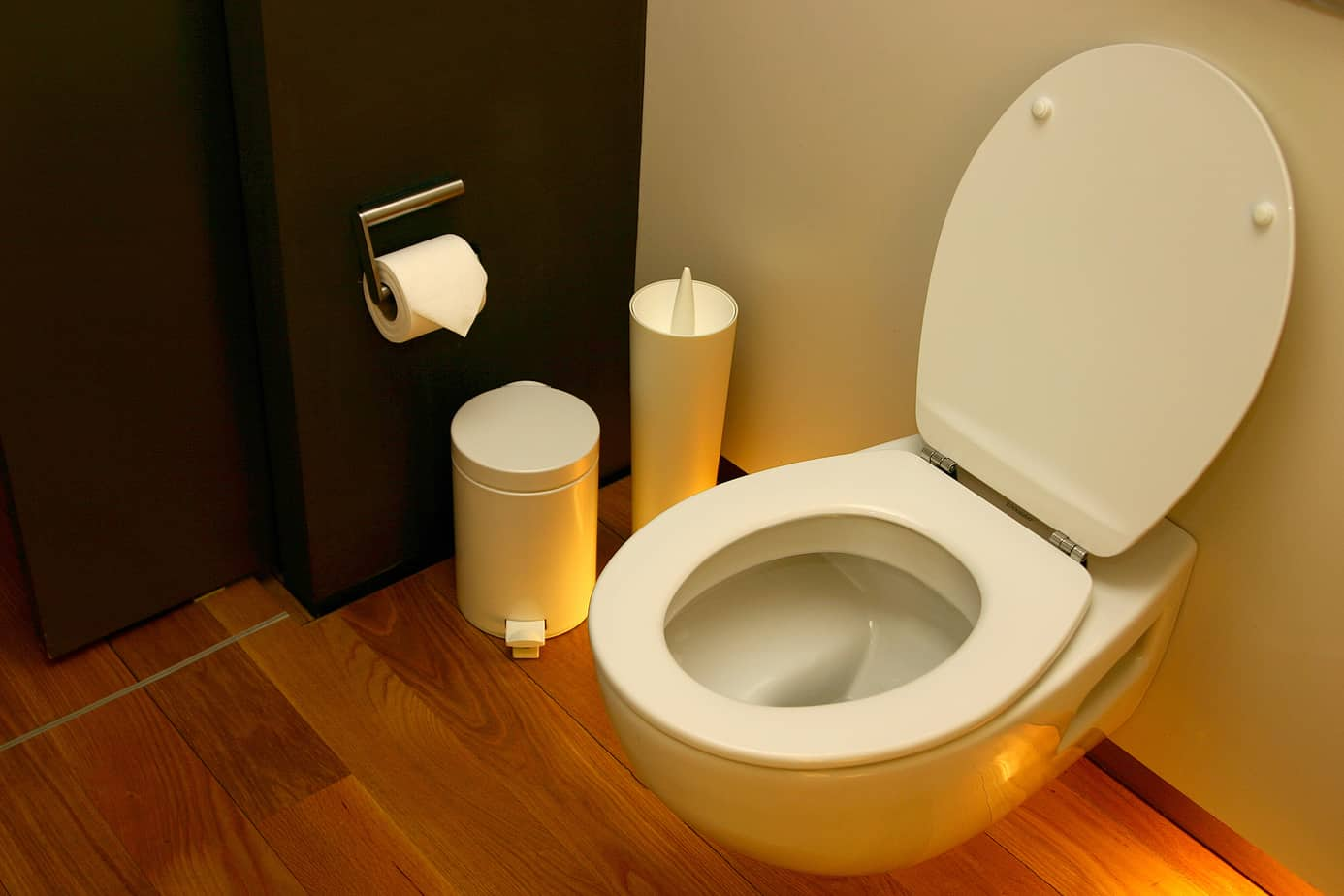 types of toilet seats. Black Bedroom Furniture Sets. Home Design Ideas