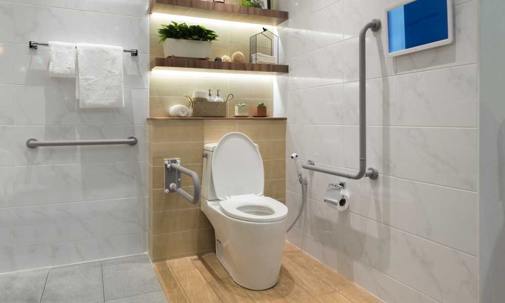 Incredible Bath Royale Premium Elongated Toilet Seat Project For Home Evergreenethics Interior Chair Design Evergreenethicsorg